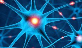 Neuronale Zellen